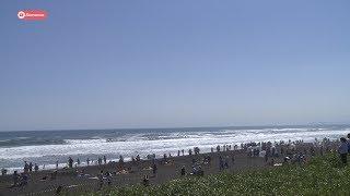 Фестиваль на берегу Тихого океана
