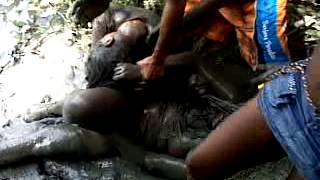 Repeat youtube video pelea de mujeres en fredonia