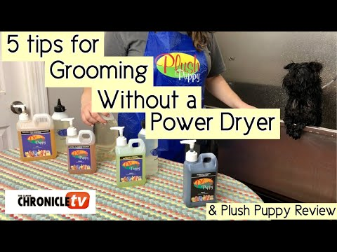Dog Show Tips for grooming without a Power Dryer & Plush Puppy Product Review