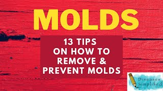 13 TIPS to Remove and Prevent Molds