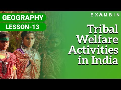 Tribal Welfare Activities in India - Constitutional Safeguar