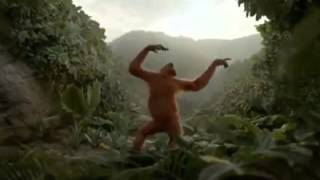 vuclip The king kong dance in honey sing song