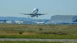 Montage Beluga XL first flight