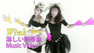 5thシングル『淋しい熱帯魚』 1989.7.5リリース 映像は『WINK VISUAL ME...