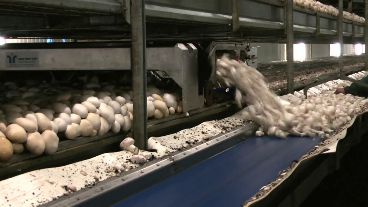 12 Machines That Show Modern Farming Isn't the Bucolic Life