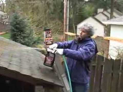 how to clean lichen off colorbond roof