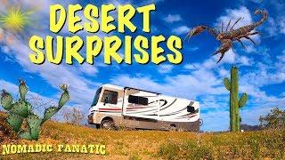 desert-boondocking-solar-install-begins-scorpions