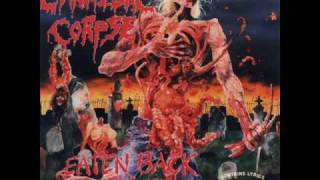 Buried In The Backyard - Cannibal Corpse