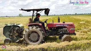 Shibaura tractor
