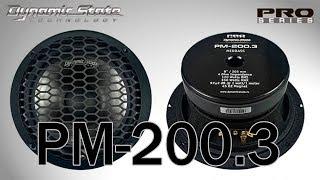Dynamic State PM-200.3 PRO Series мидвуфер 8, распаковка, обзор, прослушивание в зя и фи