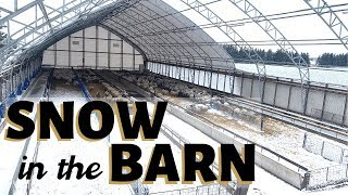 And then it snowed. (IN THE SHEEP BARN!): Vlog 184
