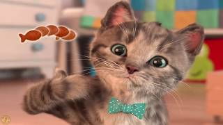 Приключения маленького котенка  Веселая игра уход за домашним животным  Мой любимый котенок 