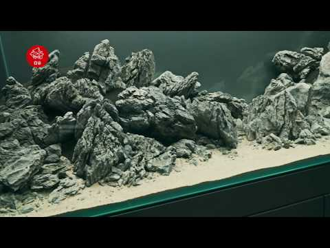 Part 1 The Road to the White Mountain 白山 Haku-san Aquascape 4KVideo #hakusan Oliver Knott