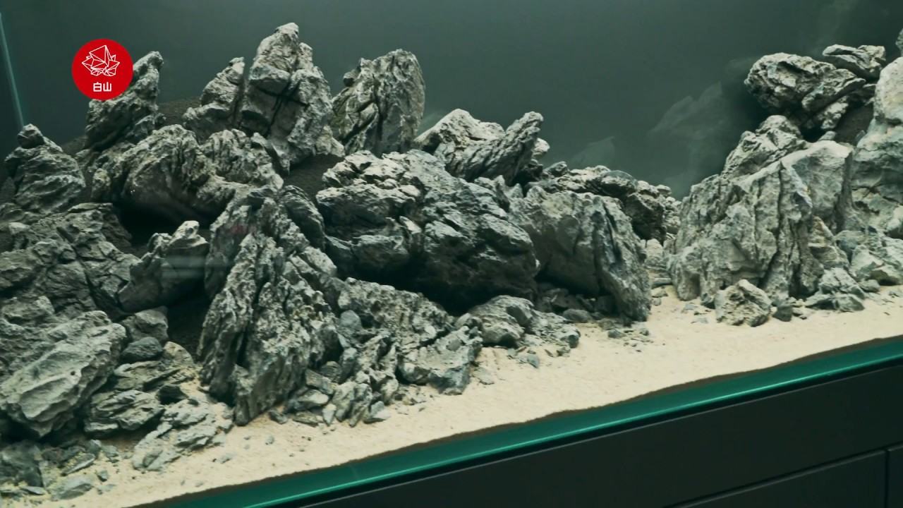 Mountain Aquascape