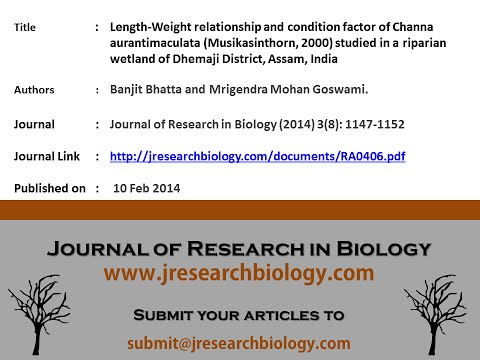 Length-Weight Relationship And Condition Factor Of Channa Aurantimaculata