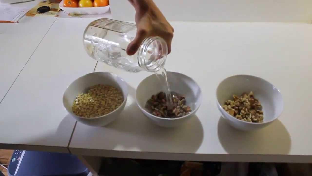 Pr germination des noix faire tremper les noix pour purifier les gras oxyd s youtube - Faire pousser une mangue ...