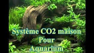 Système CO2 maison pour aquarium
