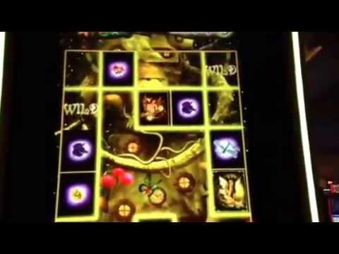 Acorn Pixie – Casumo casino