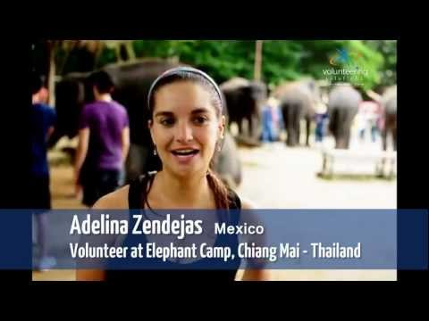 Elephant Camp Volunteer Project in Chiang Mai - Volunteering Solutions