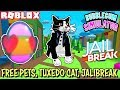 🔴 ROBLOX LIVE 🔴 VOTE! - FREE TUXEDO CAT, PETS IN BUBBLEGUM SIM, JAILBREAK UPDATE, PRES DAY SALE