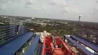 SheiKra Roller Coaster - Bush Gardens - Tampa Bay, FL