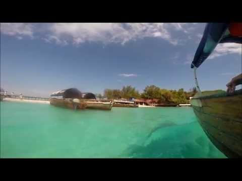 Prison Island GoPro version - Zanzibar