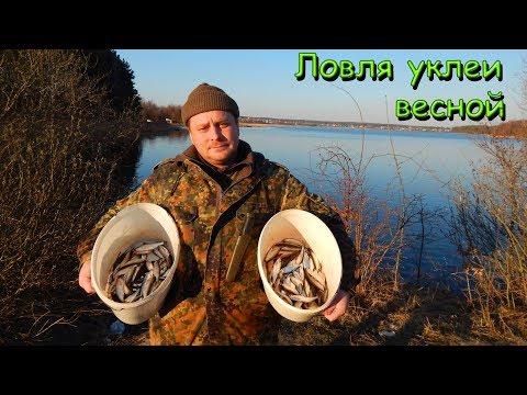 ЛОВЛЯ УКЛЕЙКИ \ Рыбалка 2019 открытие..