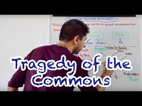 Y1/IB 26) Common Access Resources - Tragedy Of The Commons