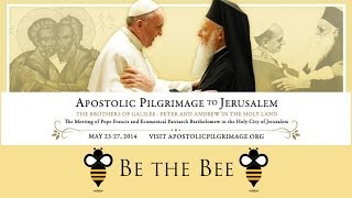 Be the Bee #35 | Apostolic Pilgrimage (D...