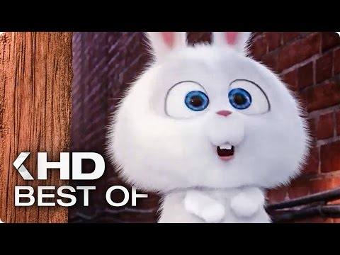 Best of Snowball (2016) The Secret Life of Pets