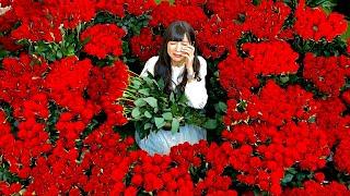 1万本。一生分のバラの花束で愛を伝えます。