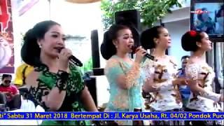 Top Hits -  Pepeling All Artis Cursari Lambada