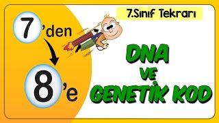DNA ve Genetik Kod  7den 8e Hazırlık Kampı 2020