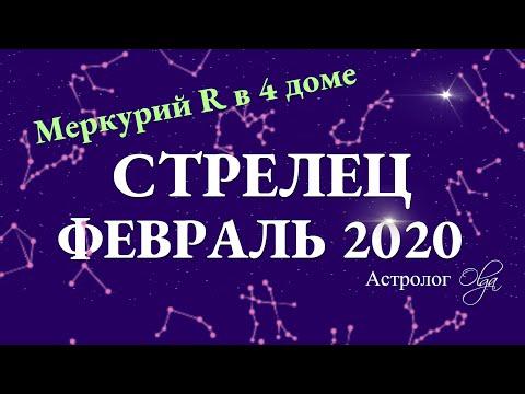 СТРЕЛЕЦ гороскоп на ФЕВРАЛЬ 2020. Меркурий Ретро. Астролог Olga