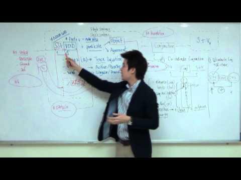 30 นาทีพิชิต Grammar 12 ชั้นปี ด้วยสมการภาษาอังกฤษ -Part III [เรียน CU-TEP ที่ไหนดี ไม่ต้องท่อง]