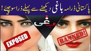 "The Facts Behind Pakistani Drama ""Baaghi""   Urdu/Hindi"