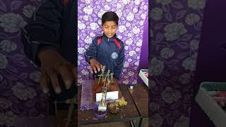Science exibition in Ambition Public School, Bishnugarh ,Akhara Chowk