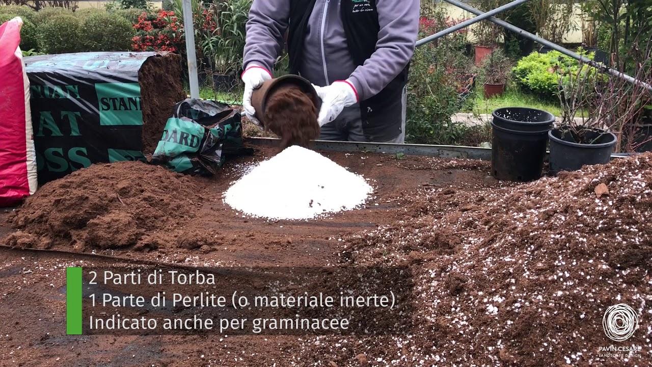 Terra Buona Per Giardino come fare il terriccio: le 3 migliori ricette - giardini