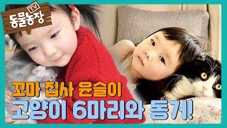 '꼬마 집사' 윤슬이와 고양이 6마리의 사랑스러운 일상! I TV동물농장 (Animal Farm) | SBS…