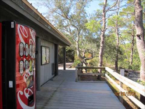 Big Lagoon State Park Rv Park Near Pensacola Fl