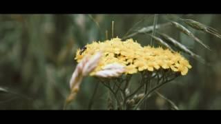 Kevsala (Video Test Lumix G7)