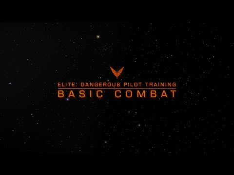 Pilot Training - Basic Combat