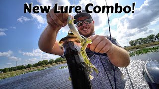 Crazy Fishing Lure Combination that Worked!