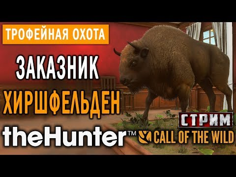 theHunter Call of the Wild #10 СТРИМ 🔫 - Заказник Хиршфельден - Трофейная Охота (Часть 2)