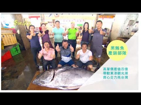 草地狀元-黑鮪魚產銷部隊(20160627播出)careermaster