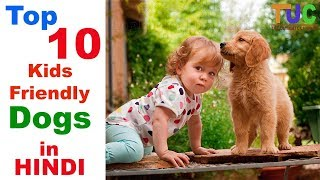 Top 10 Kids Friendly Dogs - Dogs Information - The Ultimate Channel