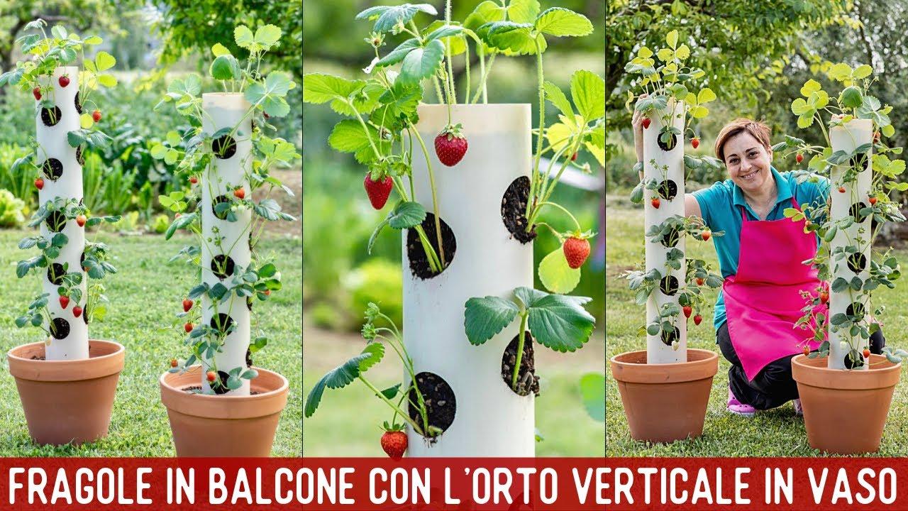 Fiori Da Piantare Nell Orto fragole sempre pronte con il giardino verticale - tutorial facile orto sul  balcone di benedetta