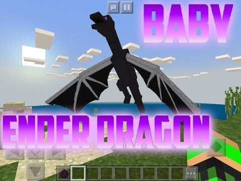 A BABY ENDER DRAGON IN MY WORLD?!|...