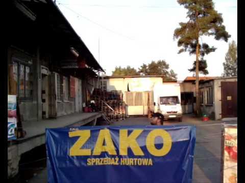 Bozenka ( We are only dreaming...)