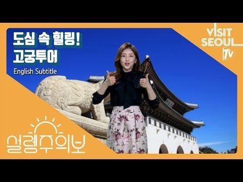 도심 속 힐링 고궁투어(Finding Peace In The Middle Of The City: A Seoul Palace Tour) [설렘주의보] (투어캐스터 최아리)